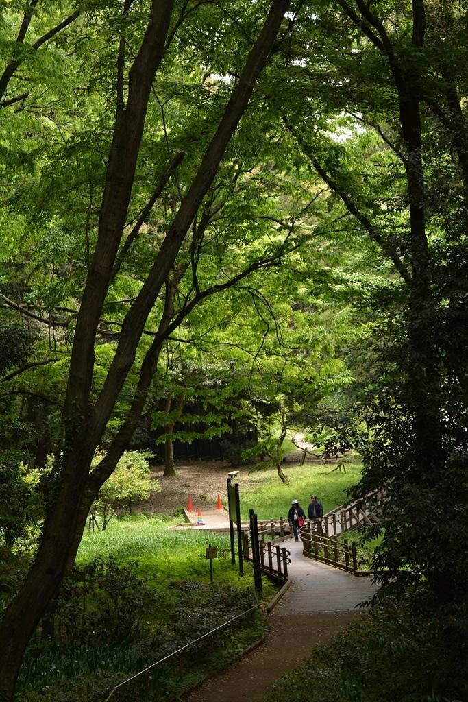 公園としてはキレイな公園だ_1