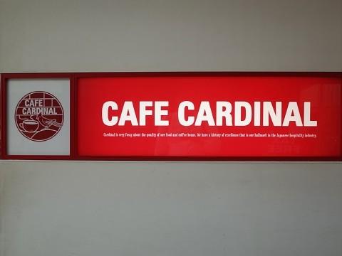 cardinaldog02.jpg