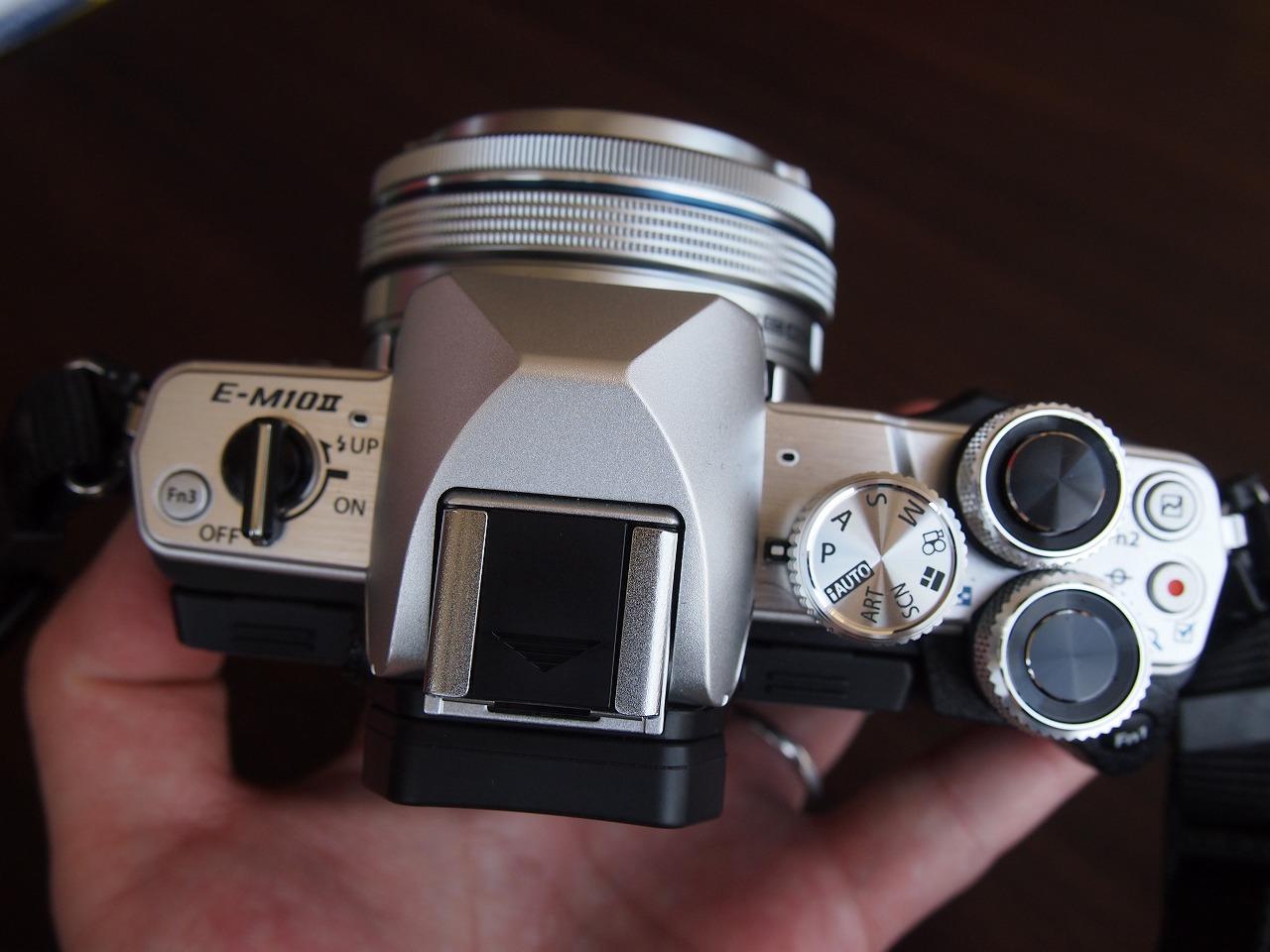 s-P1012200.jpg