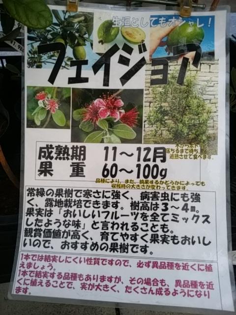201812111940409c3.jpg