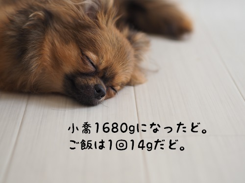P7150049.jpg