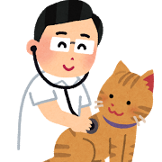 ネコ(検診