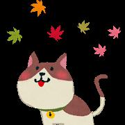 ネコ(紅葉