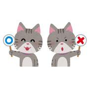 ネコ(ミスの修正