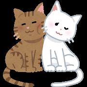 ネコ(カップル