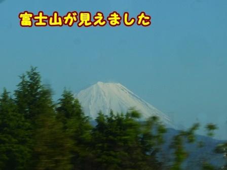 P1180251a.jpg