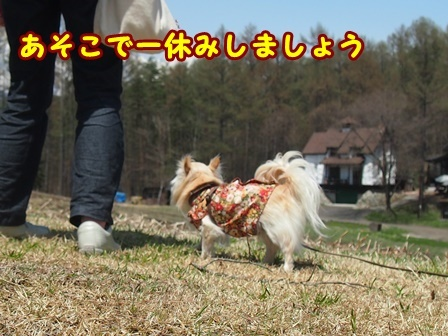blog9417a.jpg