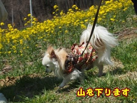 blog9421a.jpg