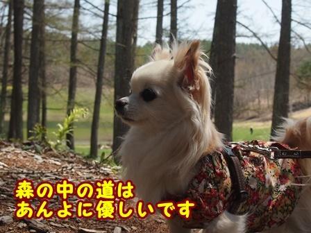 blog9424a.jpg