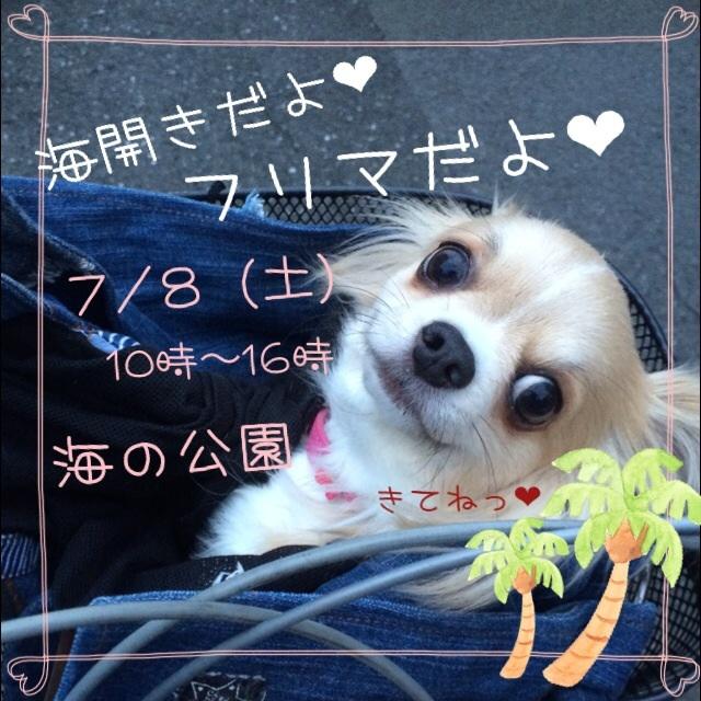 20170705212442afb.jpg