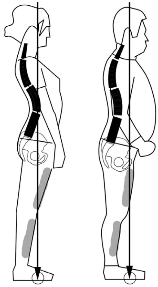 筋肉主導2