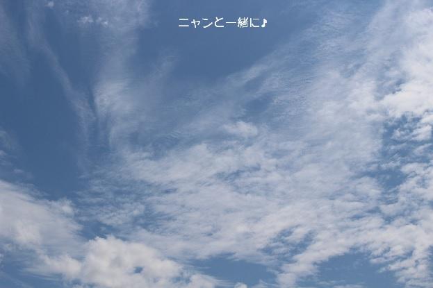 つかの間の青空