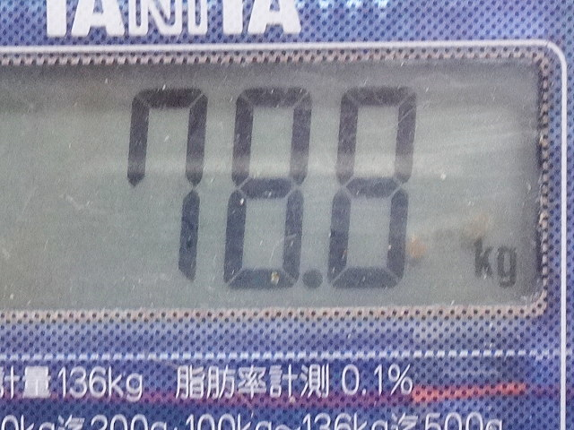 DSC04181.jpg