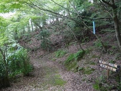 紅葉谷散策コース