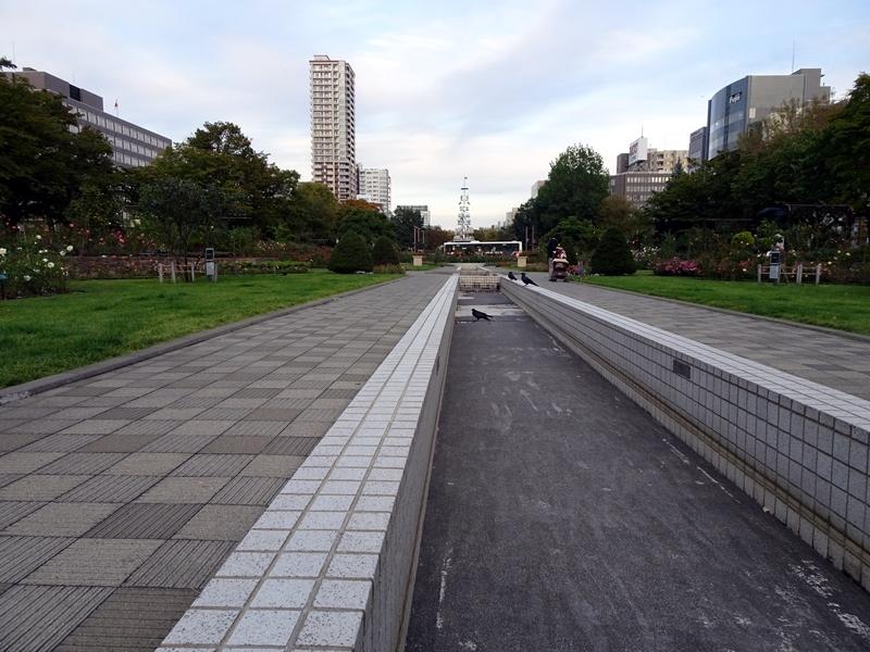 img2018-10-Hayakawa-03.jpg