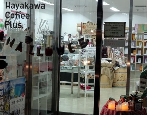 img2018-10-Hayakawa-11.jpg