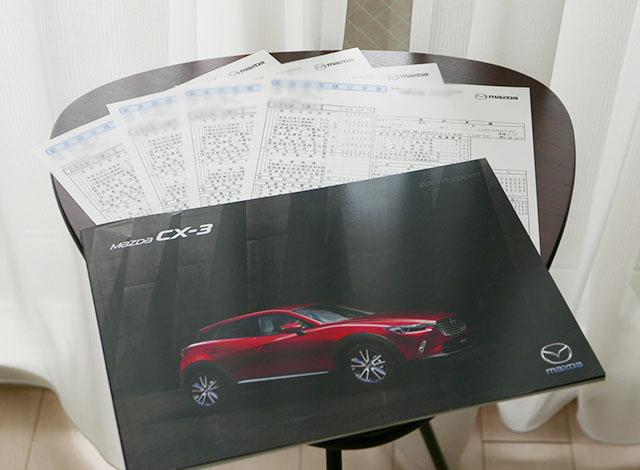 CX-3.jpg