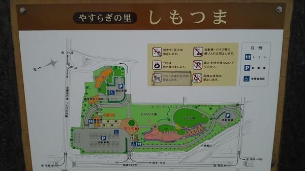 DSC_0117_R.jpg