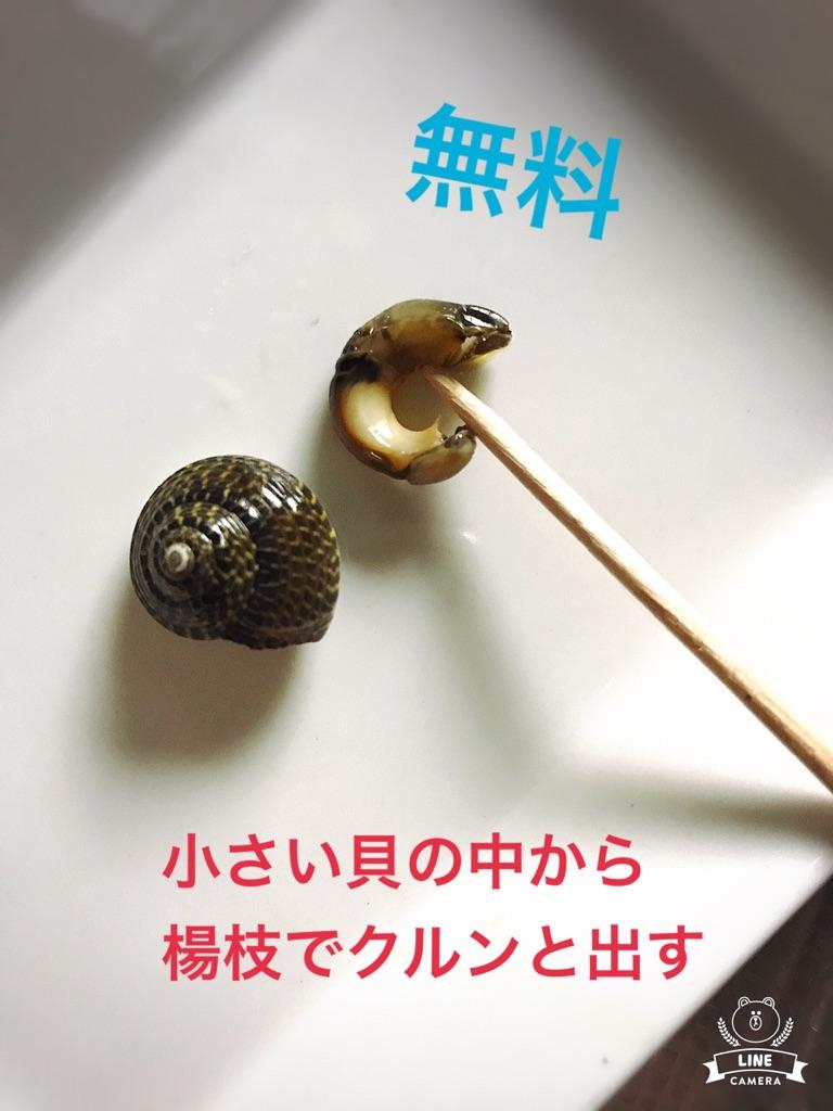 moblog_793d8474.jpg