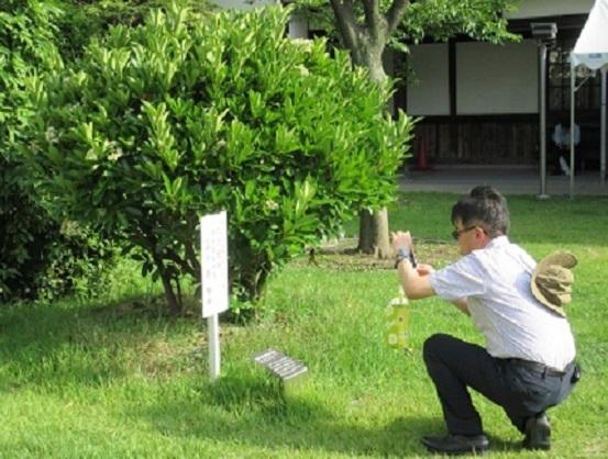 9G10S 新幹線の父サンゴ樹島秀雄を撮る 0611
