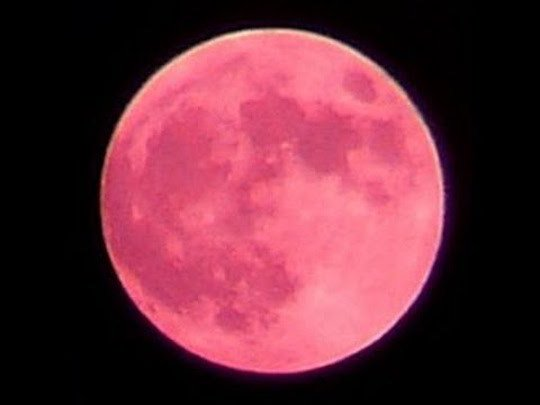 StrawberryMoon002.jpg