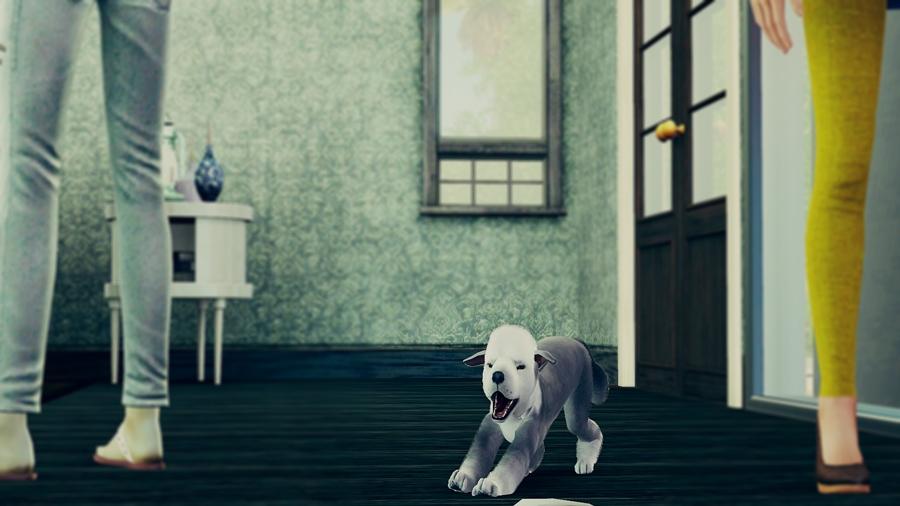 Screenshot-fc-RH462.jpg
