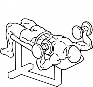 511px-Decline-dumbbell-bench-press-2_2017052219362984c.png
