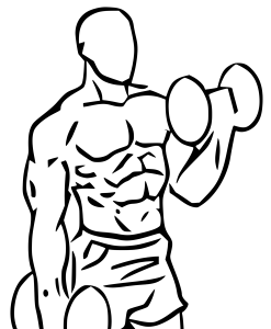 Alternating_bicep_dumbbellcurl_201705250539273ca.png