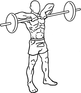Barbell-upright-rows-1_201705250606075d4.png