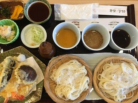 天ぷら付き二種三味うどん(冷)