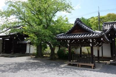 Kyoto201705-322.jpg