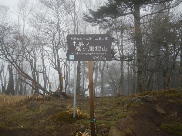 小金沢山 025