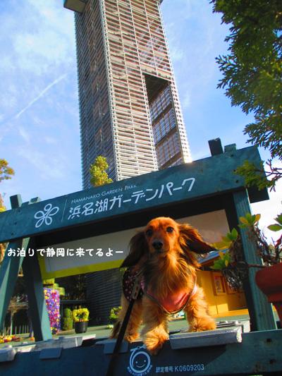 03-24-hamanako10.jpg
