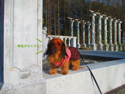 03-24-hamanako33.jpg