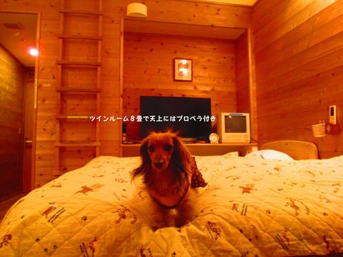 03-24-hamanako45.jpg