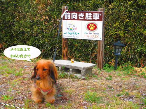 03-24-hamanako50.jpg
