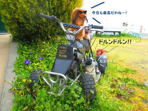 03-24-hamanako55.jpg