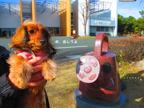 03-24-hamanako7.jpg