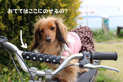 04-25-hamanako-3.jpg