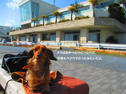 park-cafe10.jpg