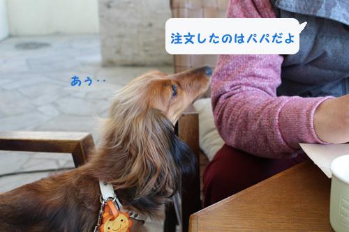 umi-lunch10.jpg