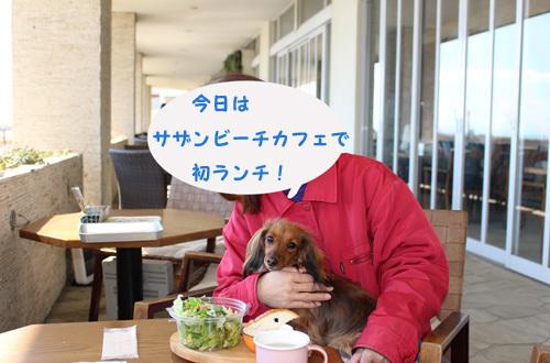 umi-lunch6.jpg