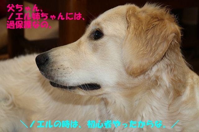 IMG_1000.jpg