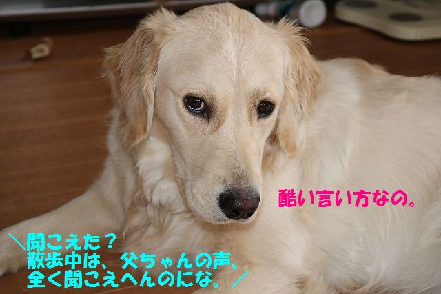 IMG_7486.jpg