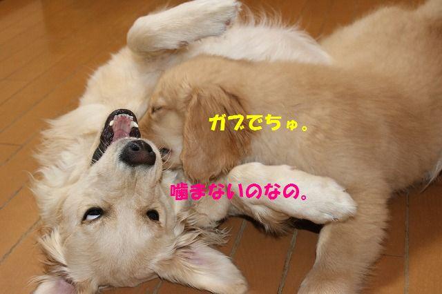 IMG_8053.jpg