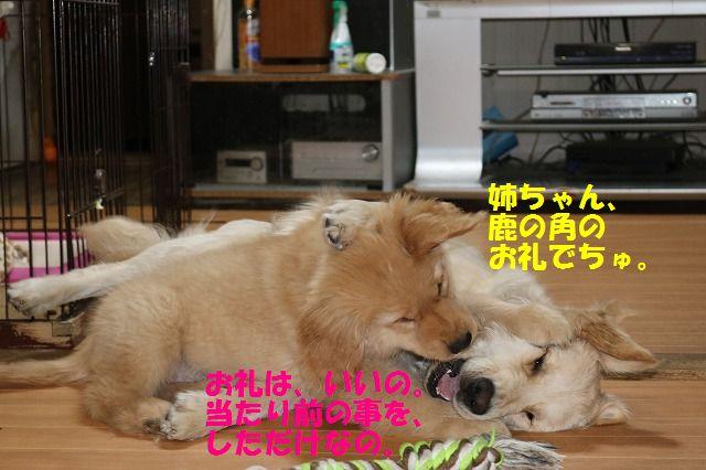 IMG_8180.jpg