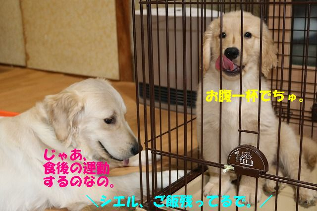 IMG_8245.jpg