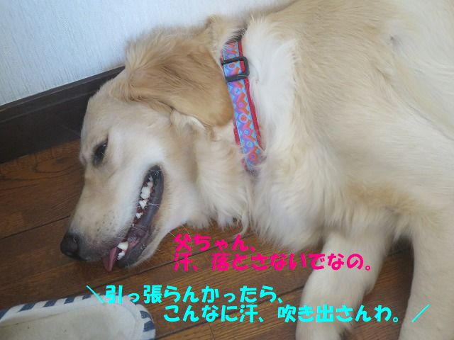 IMG_8760.jpg