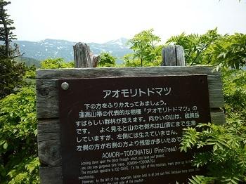 20170701194629f5c.jpg