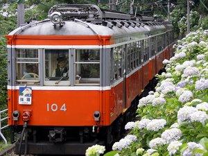 300×225あじさい電車